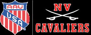 Battle of NOVA 2011